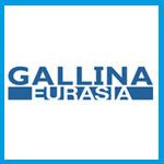 GALLİNA